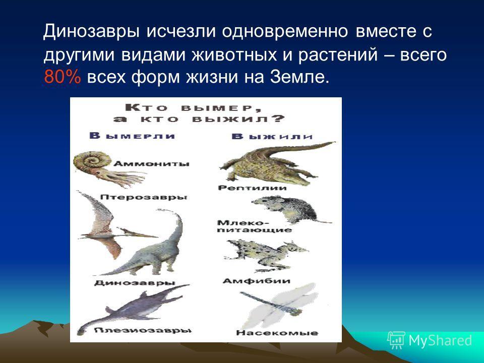 Динозавры исчезли одновременно вместе с другими видами животных и растений – всего 80% всех форм жизни на Земле.