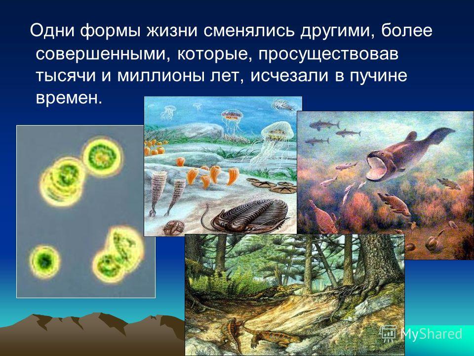 Одни формы жизни сменялись другими, более совершенными, которые, просуществовав тысячи и миллионы лет, исчезали в пучине времен.