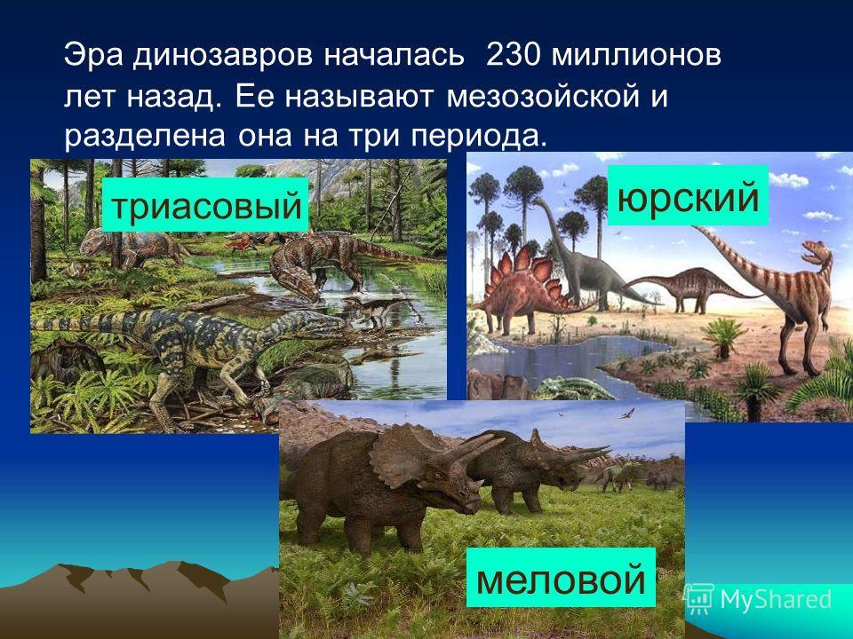 Эра динозавров началась 230 миллионов лет назад. Ее называют мезозойской и разделена она на три периода. триасовый юрский меловой