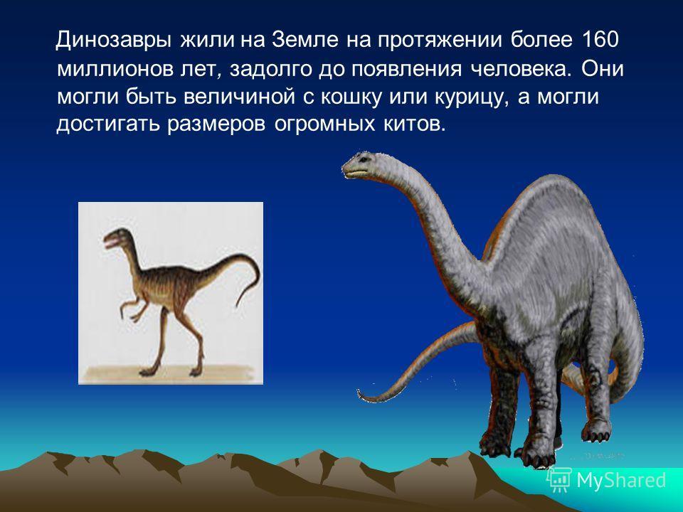 Динозавры жили на Земле на протяжении более 160 миллионов лет, задолго до появления человека. Они могли быть величиной с кошку или курицу, а могли достигать размеров огромных китов.