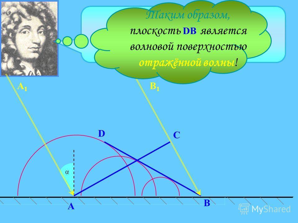 C α D В A В1В1 А1А1 Поверхность, касательная ко всем вторичным волнам, является волновой поверхностью в следующий момент времени. Таким образом, плоскость D B является волновой поверхностью отражённой волны!