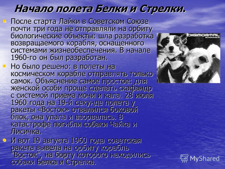 Начало полета Белки и Стрелки. После старта Лайки в Советском Союзе почти три года не отправляли на орбиту биологические объекты: шла разработка возвращаемого корабля, оснащенного системами жизнеобеспечения. В начале 1960-го он был разработан. После