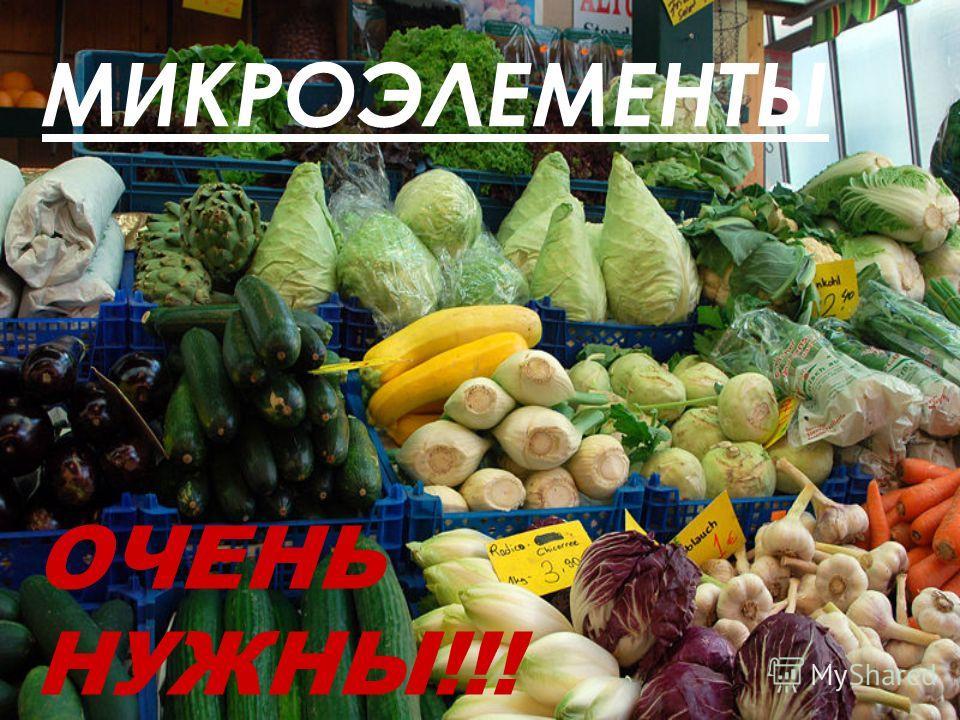 МИКРОЭЛЕМЕНТЫ ОЧЕНЬ НУЖНЫ!!!