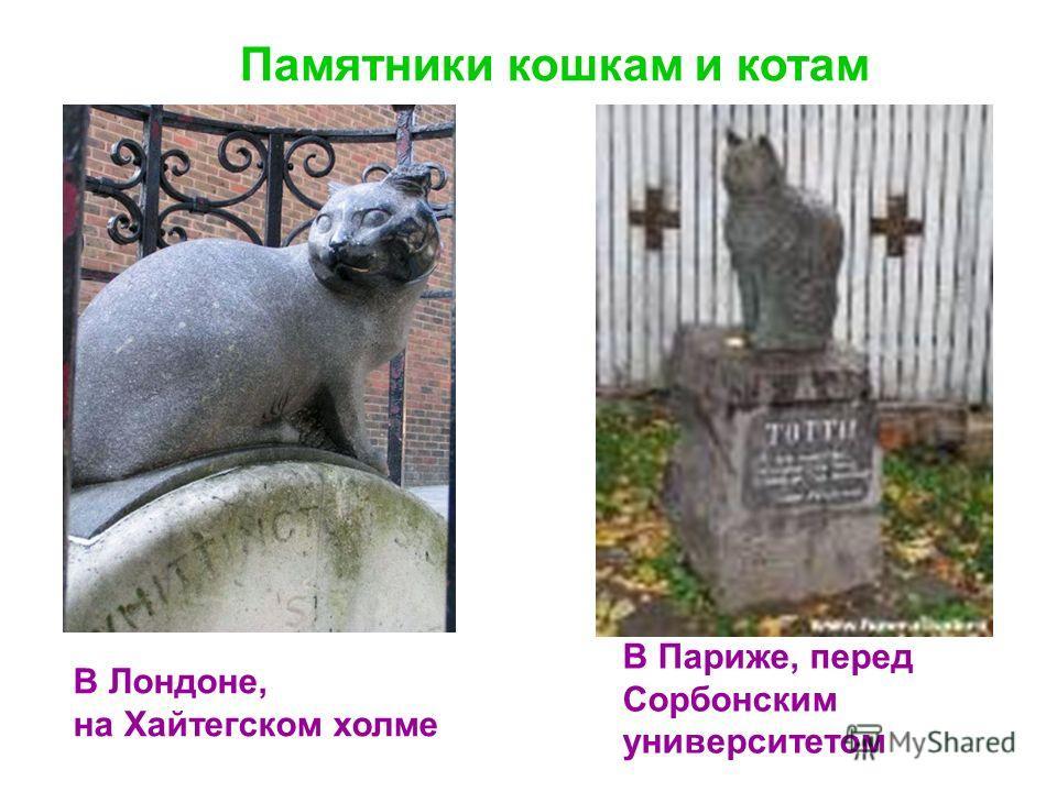Памятники кошкам и котам В Лондоне, на Хайтегском холме В Париже, перед Сорбонским университетом