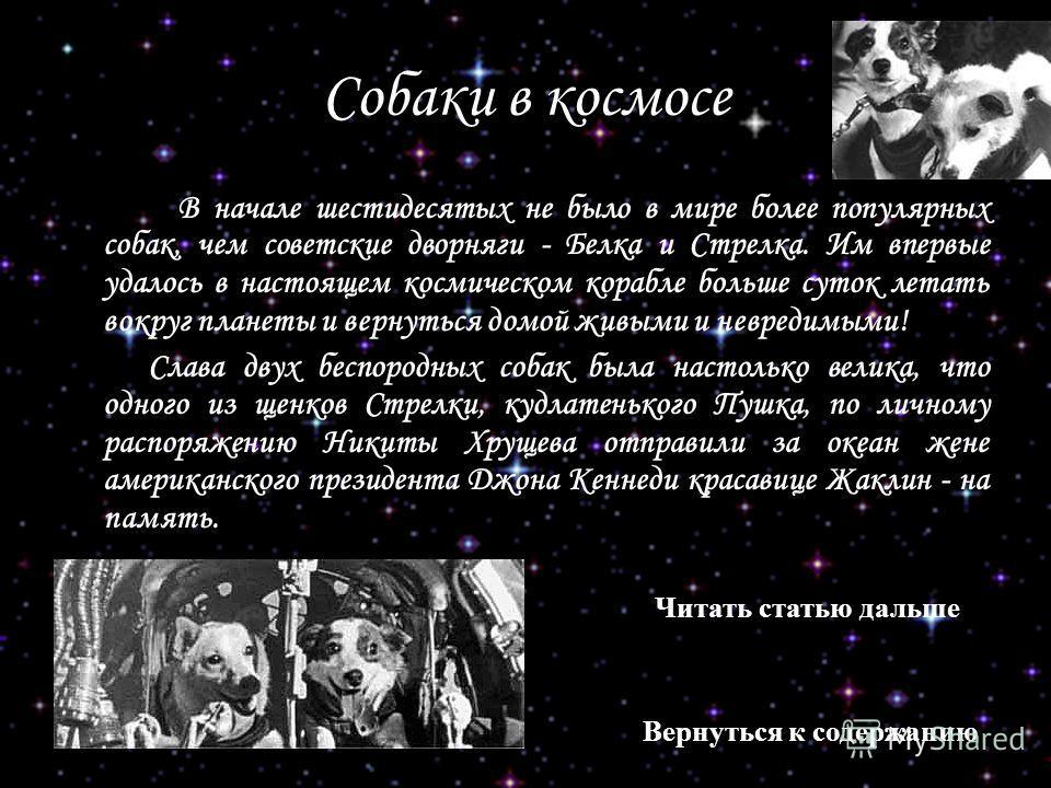 Собаки в космосе В начале шестидесятых не было в мире более популярных собак, чем советские дворняги - Белка и Стрелка. Им впервые удалось в настоящем космическом корабле больше суток летать вокруг планеты и вернуться домой живыми и невредимыми! Слав