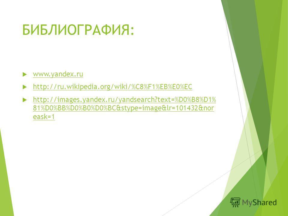 БИБЛИОГРАФИЯ: www.yandex.ru http://ru.wikipedia.org/wiki/%C8%F1%EB%E0%EC http://images.yandex.ru/yandsearch?text=%D0%B8%D1% 81%D0%BB%D0%B0%D0%BC&stype=image&lr=101432&nor eask=1 http://images.yandex.ru/yandsearch?text=%D0%B8%D1% 81%D0%BB%D0%B0%D0%BC&