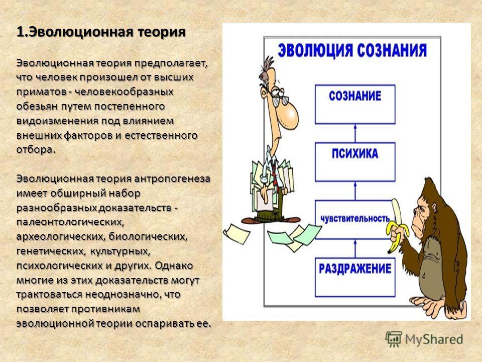 1.Эволюционная теория Эволюционная теория предполагает, что человек произошел от высших приматов - человекообразных обезьян путем постепенного видоизменения под влиянием внешних факторов и естественного отбора. Эволюционная теория антропогенеза имеет