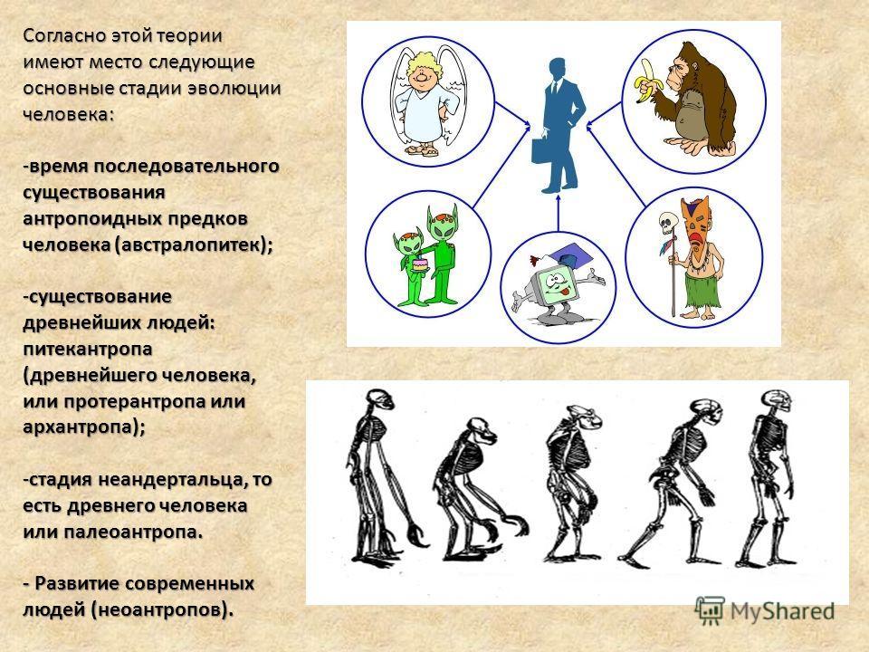 Согласно этой теории имеют место следующие основные стадии эволюции человека: -время последовательного существования антропоидных предков человека (австралопитек); -существование древнейших людей: питекантропа (древнейшего человека, или протерантропа