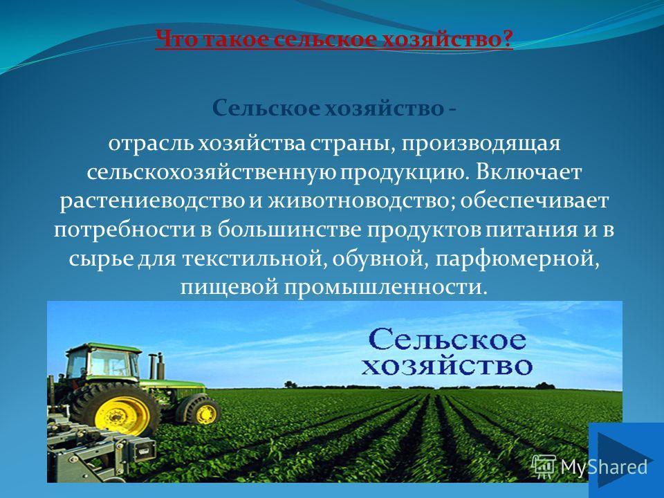 Что такое сельское хозяйство? Сельское хозяйство - отрасль хозяйства страны, производящая сельскохозяйственную продукцию. Включает растениеводство и животноводство; обеспечивает потребности в большинстве продуктов питания и в сырье для текстильной, о