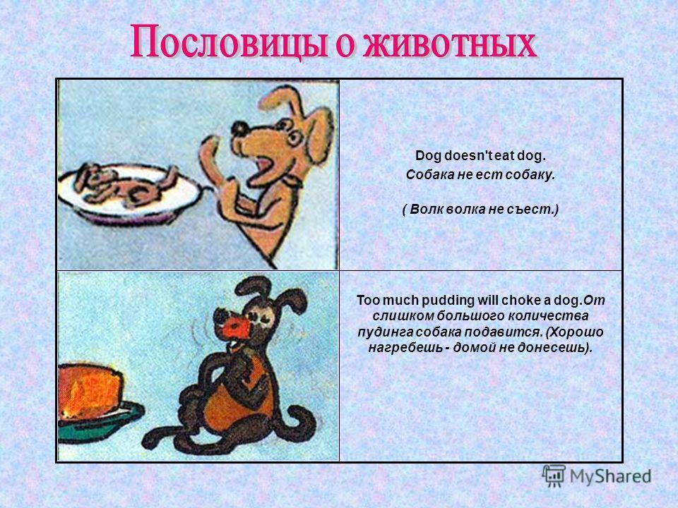 Too much pudding will choke a dog.От слишком большого количества пудинга собака подавится. (Хорошо нагребешь - домой не донесешь). Dog doesn't eat dog. Собака не ест собаку. ( Волк волка не съест.)