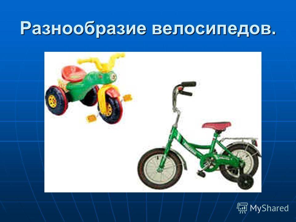 Разнообразие велосипедов.
