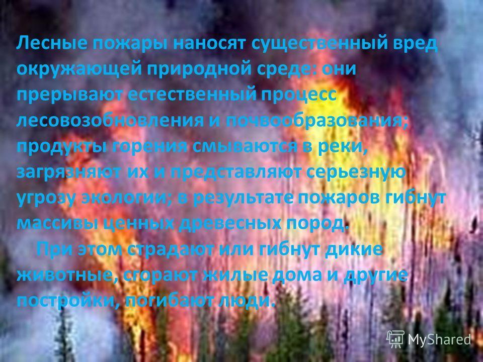 ПОДЗЕМНЫЙ ПОЖАР Подземный пожар может длиться месяцами, иногда годами и даже десятилетиями. Что горит под землей? Конечно уголь. И еще торф. Погасить его очень трудно: попробуй-ка доберись до огня, если он на глубине в несколько десятков метров. Очен
