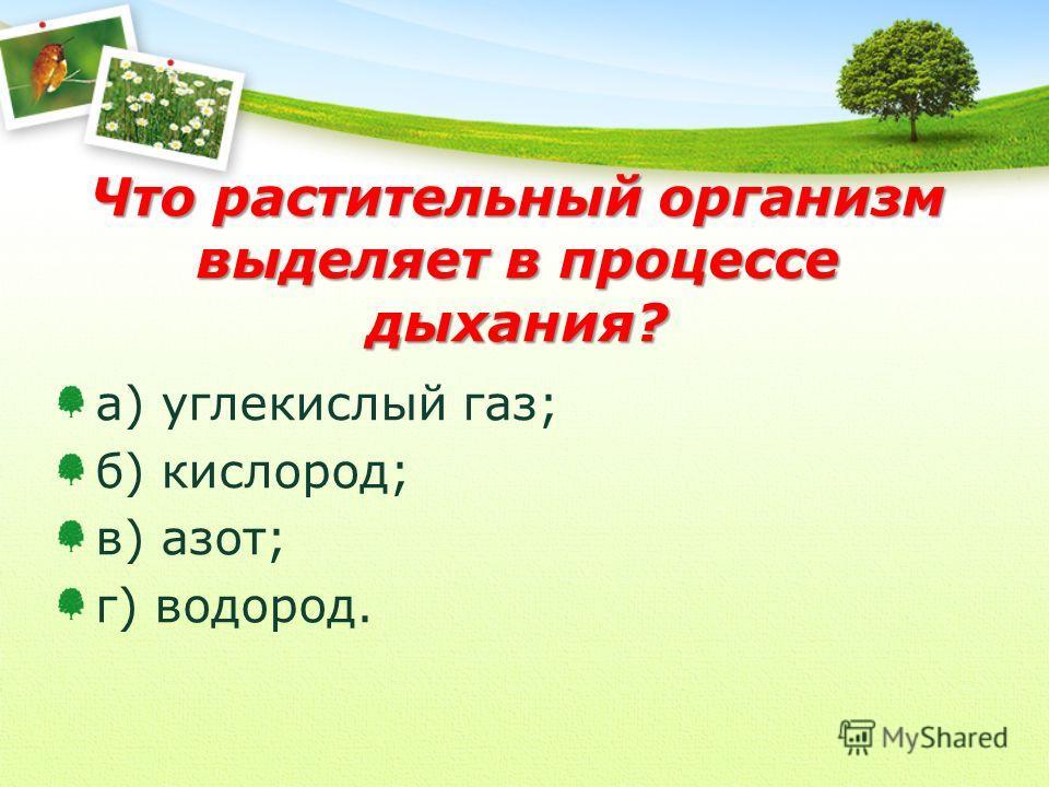 Что растительный организм выделяет в процессе дыхания? а) углекислый газ; б) кислород; в) азот; г) водород.