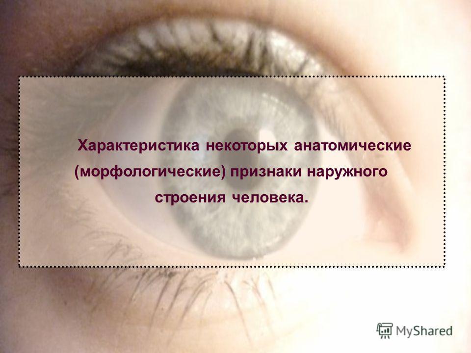 Характеристика некоторых анатомические (морфологические) признаки наружного строения человека.