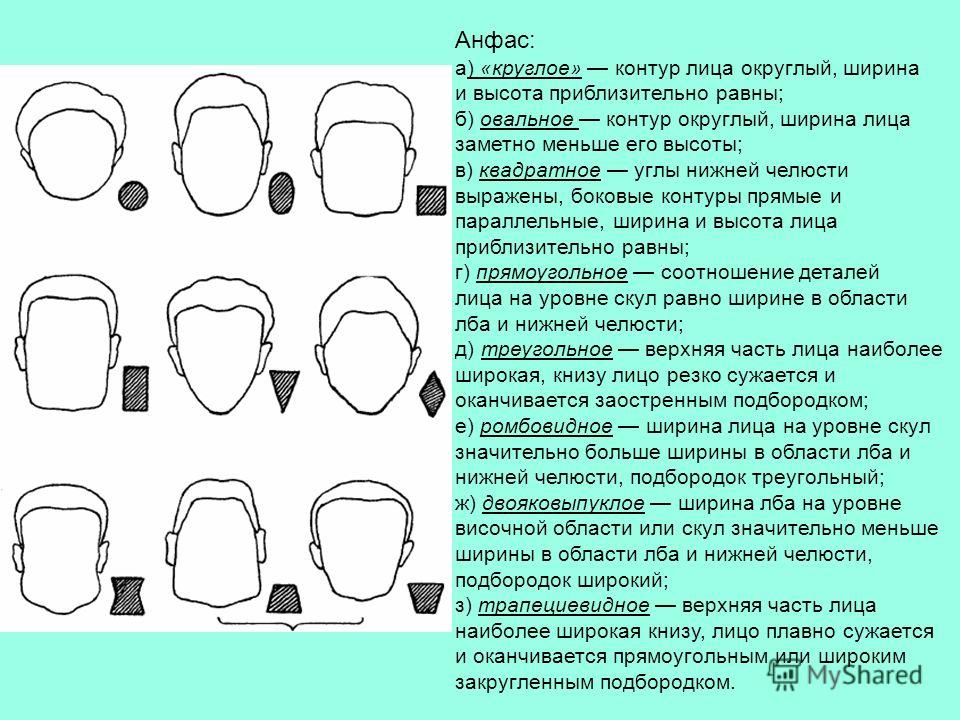 Анфас: а) «круглое» контур лица округлый, ширина и высота приблизительно равны; б) овальное контур округлый, ширина лица заметно меньше его высоты; в) квадратное углы нижней челюсти выражены, боковые контуры прямые и параллельные, ширина и высота лиц