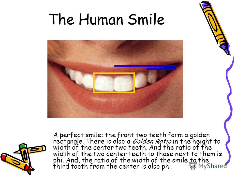 The Human Smile A perfect smile: the front two teeth form a golden rectangle. There is also a Golden Ratio in the height to width of the center two teeth. And the ratio of the width of the two center teeth to those next to them is phi. And, the ratio