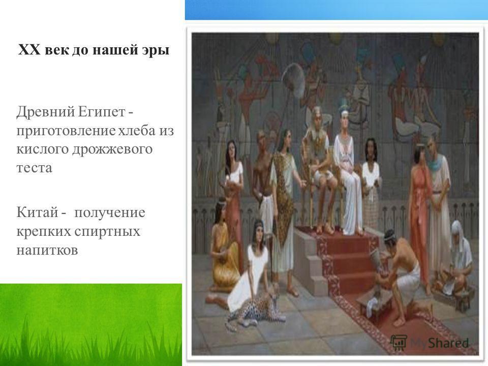 XX век до нашей эры Древний Египет - приготовление хлеба из кислого дрожжевого теста Китай - получение крепких спиртных напитков
