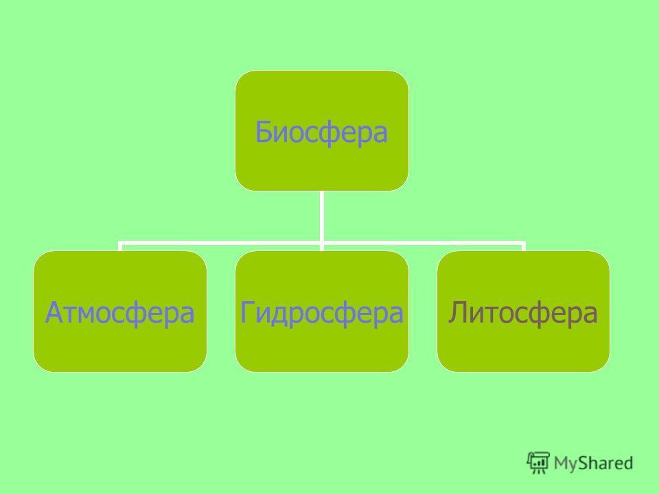 Биосфера АтмосфераГидросфераЛитосфера