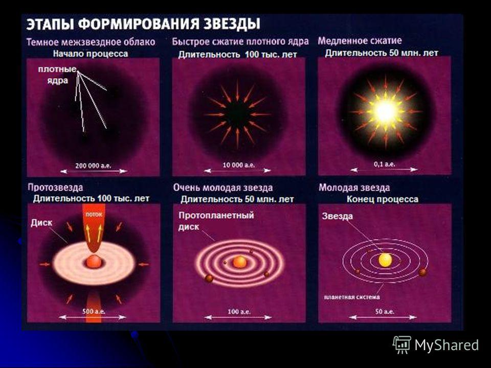 Эволюция звезд зависит от двух сил: - гравитационной, - силы давления газа