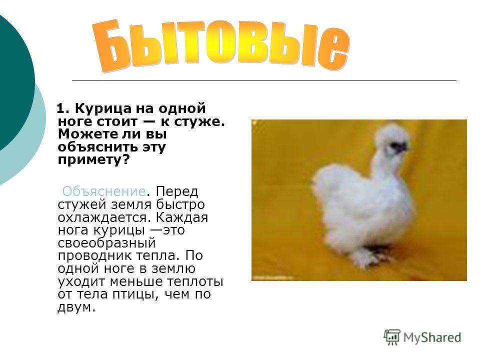 1. Курица на одной ноге стоит к стуже. Можете ли вы объяснить эту примету? Объяснение. Перед стужей земля быстро охлаждается. Каждая нога курицы это своеобразный проводник тепла. По одной ноге в землю уходит меньше теплоты от тела птицы, чем по двум.
