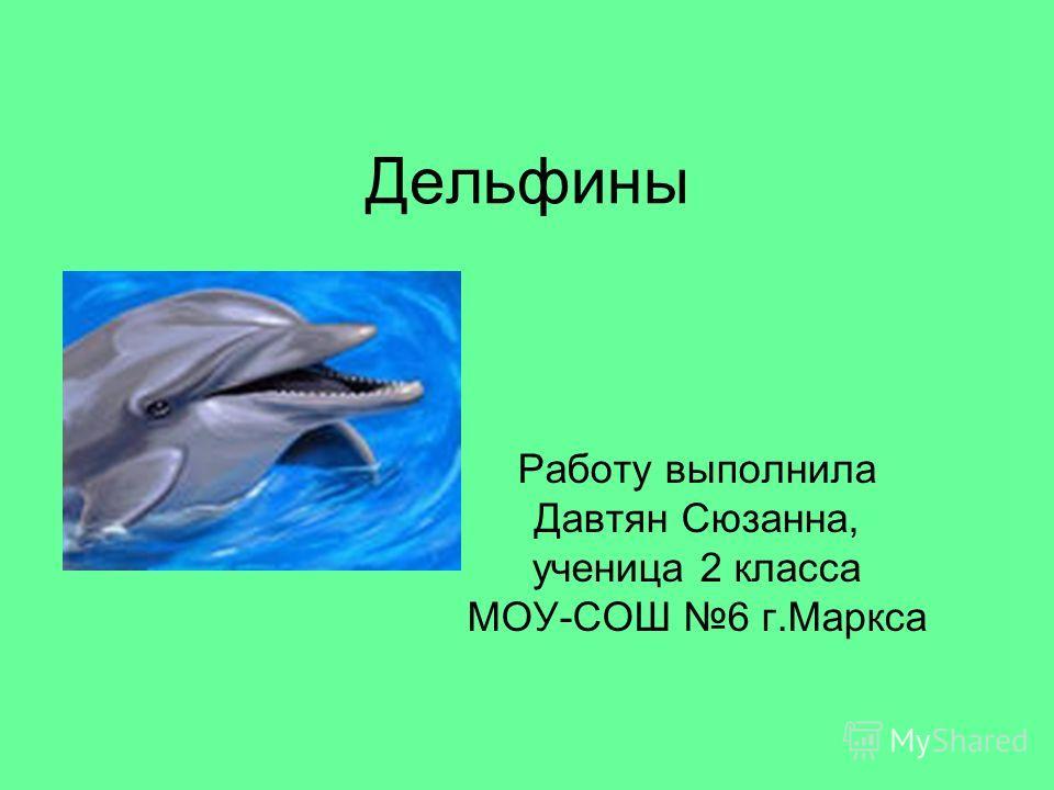 Дельфины Работу выполнила Давтян Сюзанна, ученица 2 класса МОУ-СОШ 6 г.Маркса