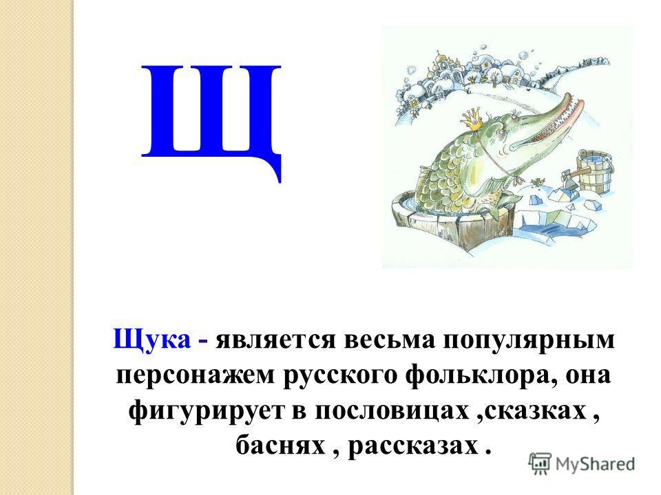 Щука - является весьма популярным персонажем русского фольклора, она фигурирует в пословицах,сказках, баснях, рассказах. Щ