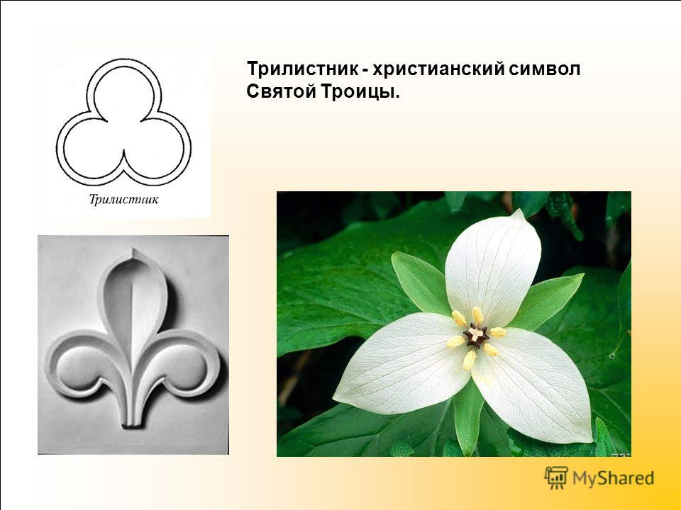 Трилистник - христианский символ Святой Троицы.