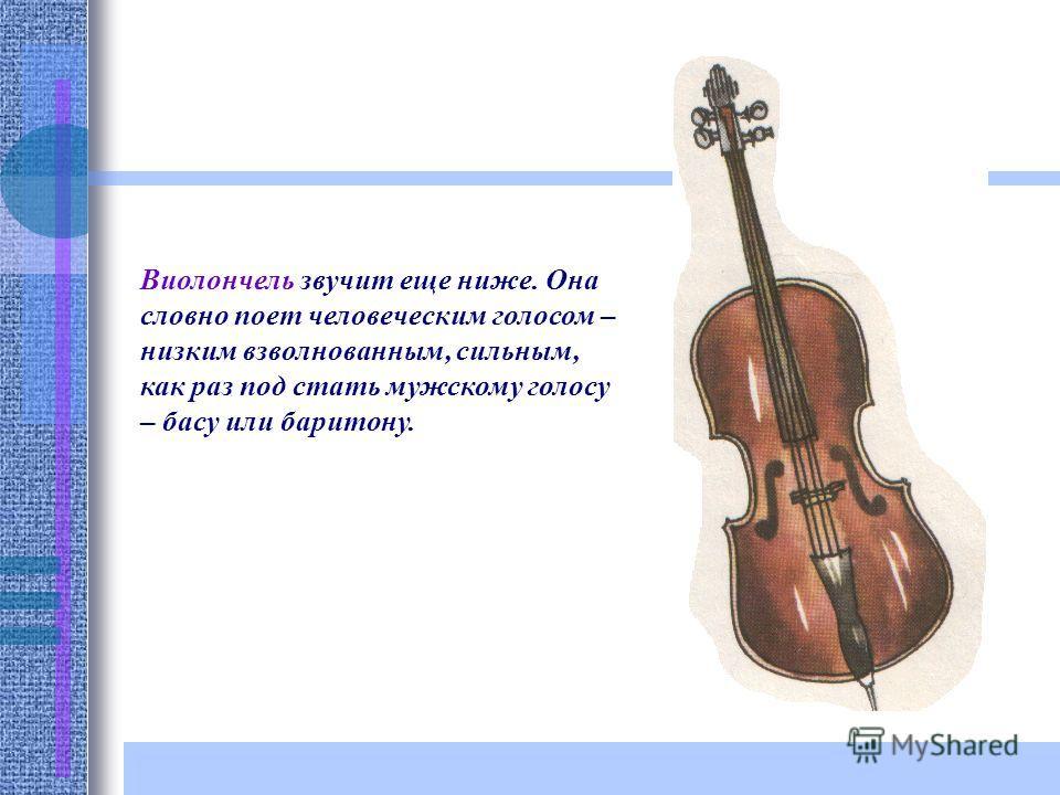 Виолончель звучит еще ниже. Она словно поет человеческим голосом – низким взволнованным, сильным, как раз под стать мужскому голосу – басу или баритону.