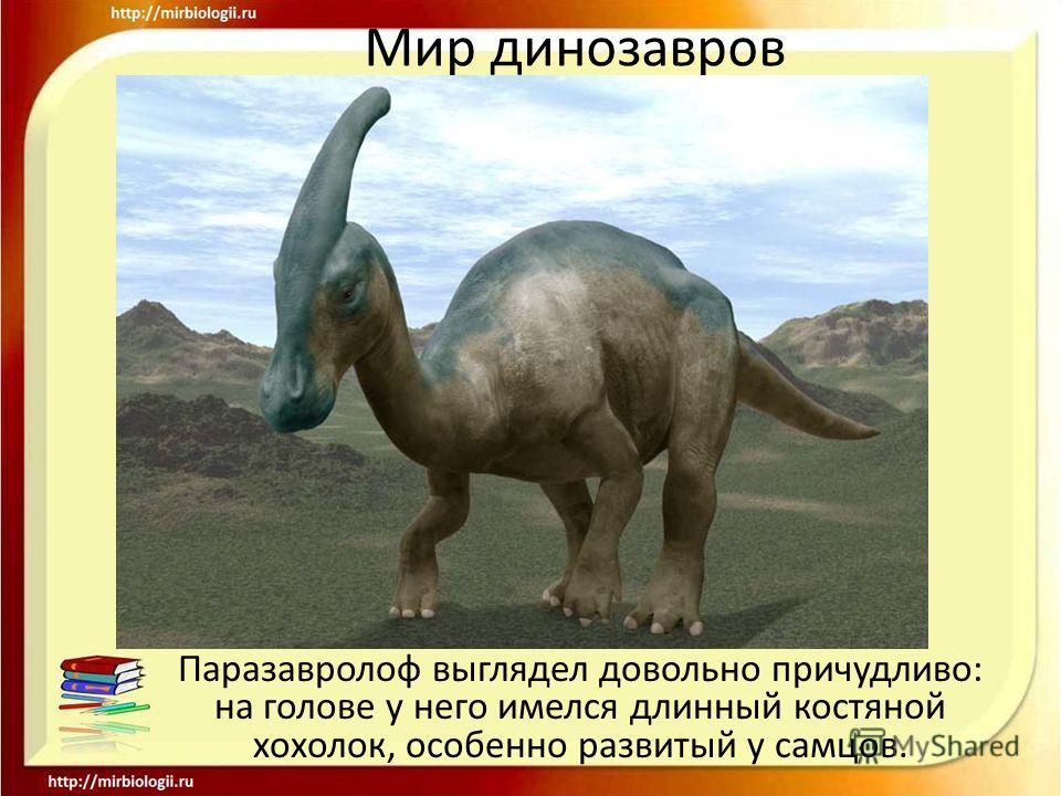 Мир динозавров Паразавролоф выглядел довольно причудливо: на голове у него имелся длинный костяной хохолок, особенно развитый у самцов.