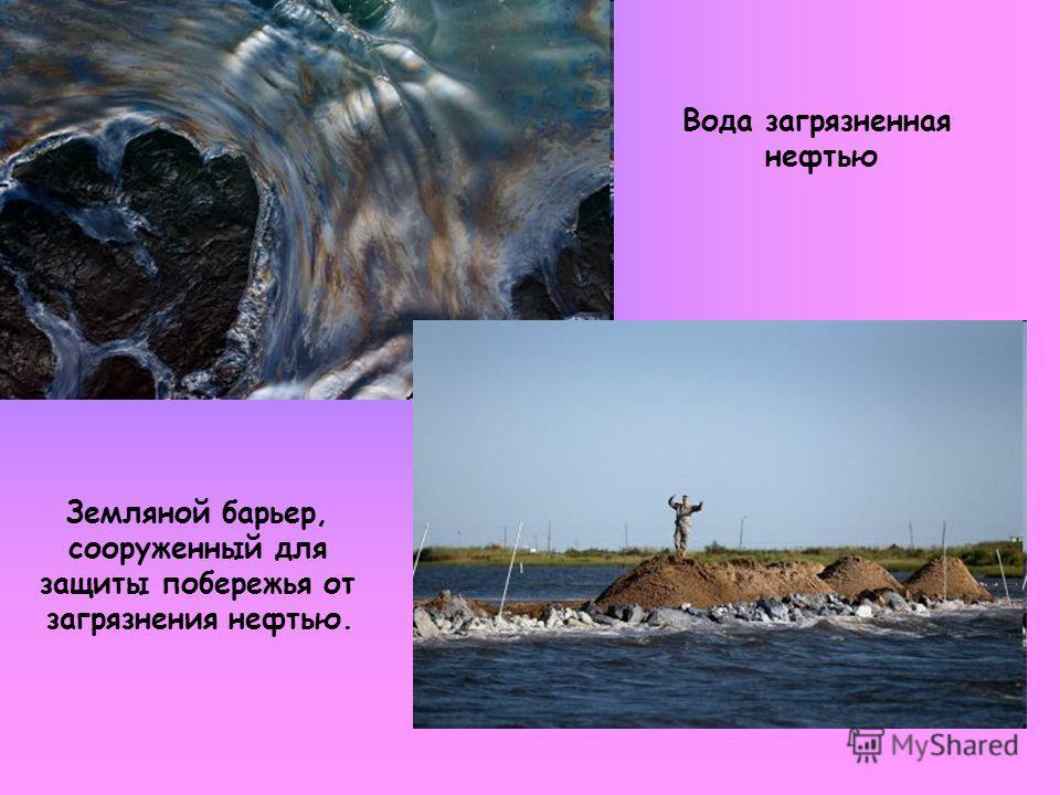 Вода загрязненная нефтью Земляной барьер, сооруженный для защиты побережья от загрязнения нефтью.