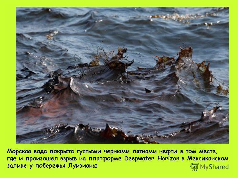 Морская вода покрыта густыми черными пятнами нефти в том месте, где и произошел взрыв на платформе Deepwater Horizon в Мексиканском заливе у побережья Луизианы