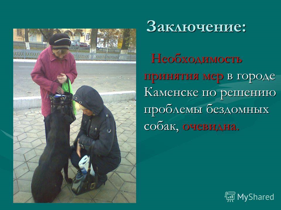 Заключение: Заключение: Необходимость принятия мер в городе Каменске по решению проблемы бездомных собак, очевидна. Необходимость принятия мер в городе Каменске по решению проблемы бездомных собак, очевидна.