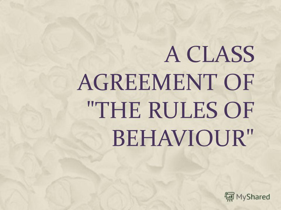 A Class Agreement Of The Rules Of Behaviour