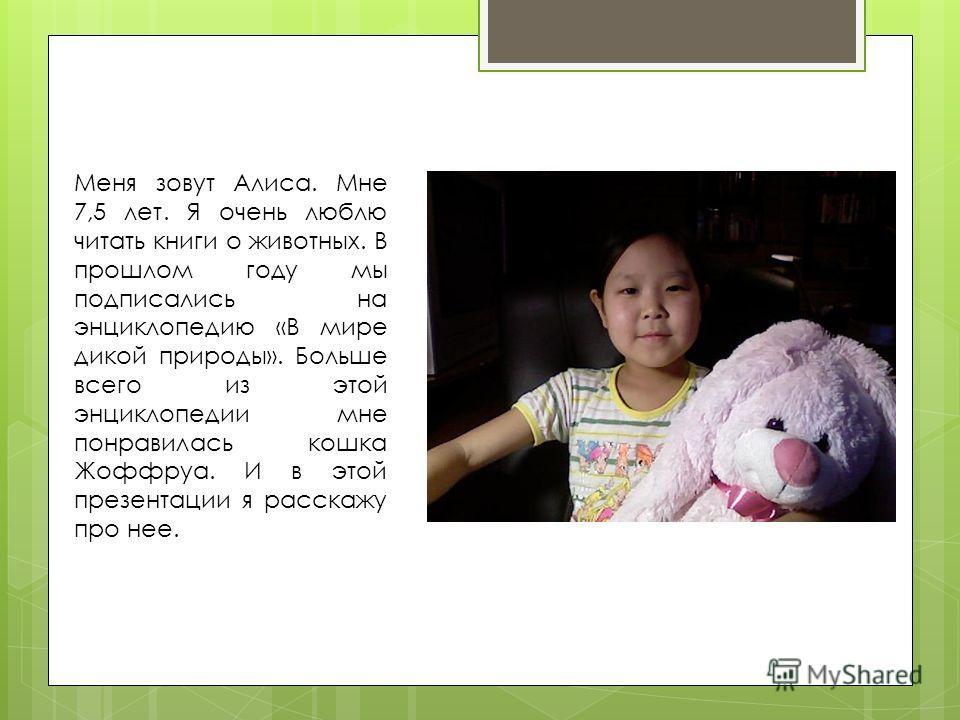 Меня зовут Алиса. Мне 7,5 лет. Я очень люблю читать книги о животных. В прошлом году мы подписались на энциклопедию «В мире дикой природы». Больше всего из этой энциклопедии мне понравилась кошка Жоффруа. И в этой презентации я расскажу про нее.