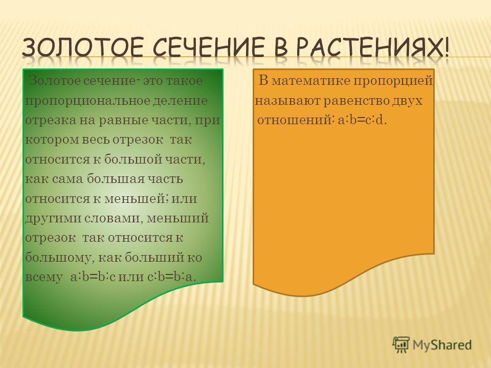 Золотое сечение- это такое В математике пропорцией пропорциональное деление называют равенство двух отрезка на равные части, при отношений: a:b=c:d. котором весь отрезок так относится к большой части, как сама большая часть относится к меньшей; или д
