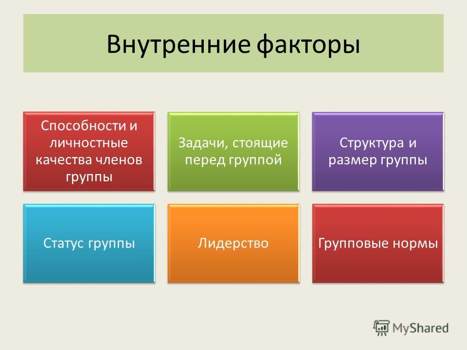 Способности и личностные качества членов группы Задачи, стоящие перед группой Структура и размер группы Статус группыЛидерствоГрупповые нормы Внутренние факторы