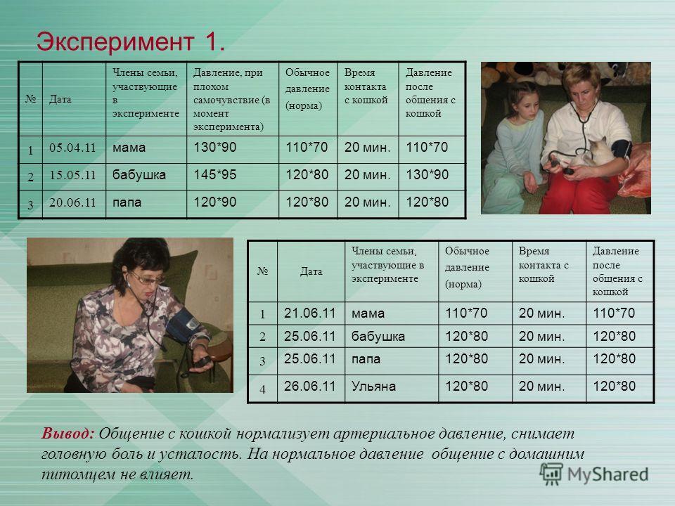 Эксперимент 1. Дата Члены семьи, участвующие в эксперименте Давление, при плохом самочувствие (в момент эксперимента) Обычное давление (норма) Время контакта с кошкой Давление после общения с кошкой 1 05.04.11 мама130*90110*7020 мин.110*70 2 15.05.11