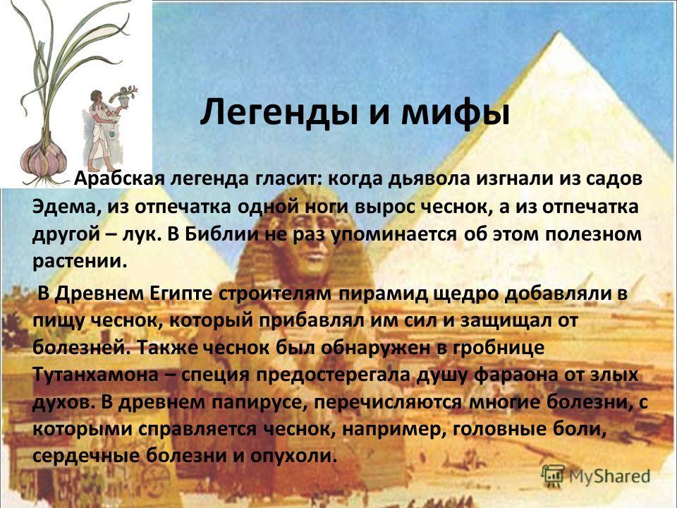 Легенды и мифы Арабская легенда гласит: когда дьявола изгнали из садов Эдема, из отпечатка одной ноги вырос чеснок, а из отпечатка другой – лук. В Библии не раз упоминается об этом полезном растении. В Древнем Египте строителям пирамид щедро добавлял