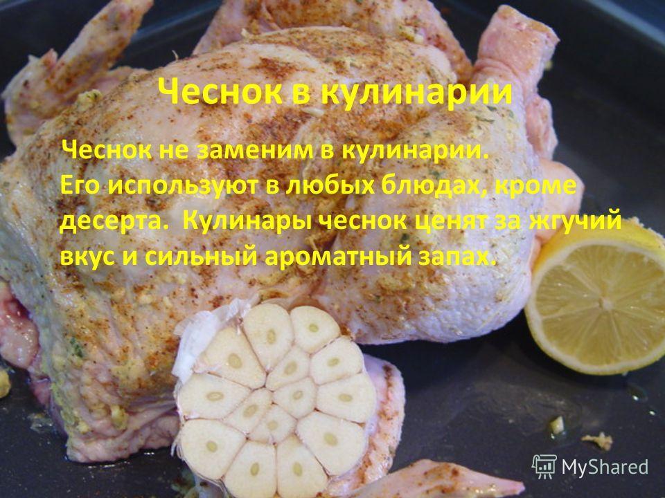 Чеснок не заменим в кулинарии. Его используют в любых блюдах, кроме десерта. Кулинары чеснок ценят за жгучий вкус и сильный ароматный запах. Чеснок в кулинарии