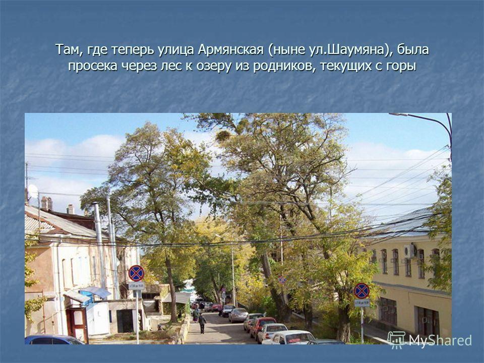 Там, где теперь улица Армянская (ныне ул.Шаумяна), была просека через лес к озеру из родников, текущих с горы
