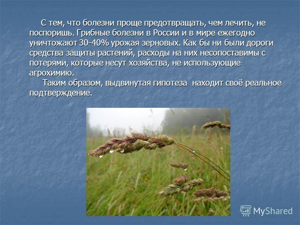 С тем, что болезни проще предотвращать, чем лечить, не поспоришь. Грибные болезни в России и в мире ежегодно уничтожают 30-40% урожая зерновых. Как бы ни были дороги средства защиты растений, расходы на них несопоставимы с потерями, которые несут хоз
