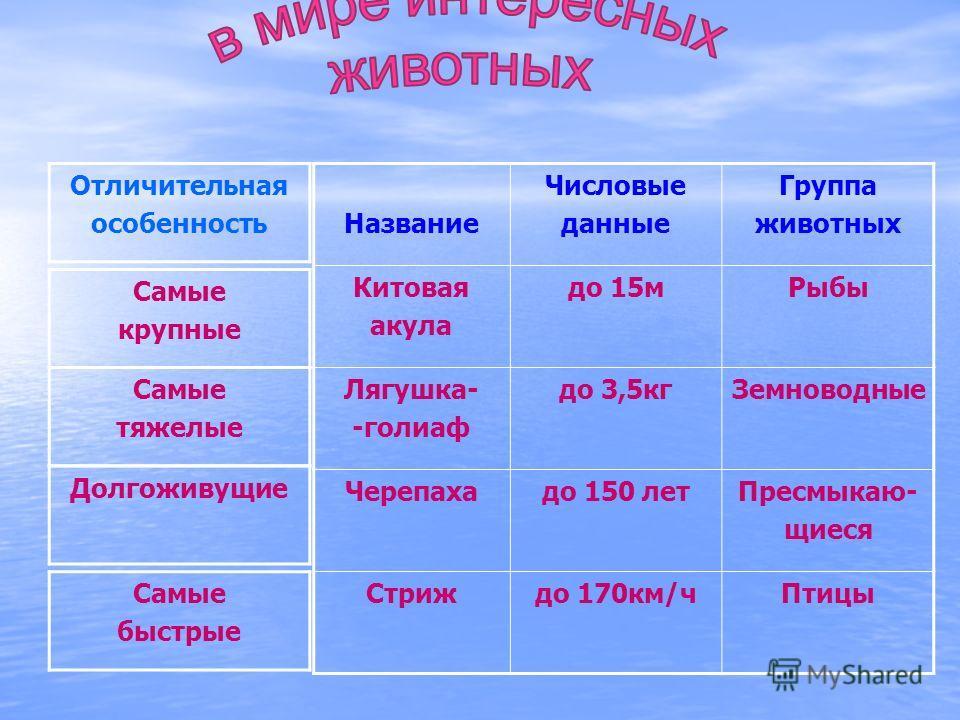 РАЗВИВАЕТ СКОРОСТЬ ДО 170 КМ\Ч