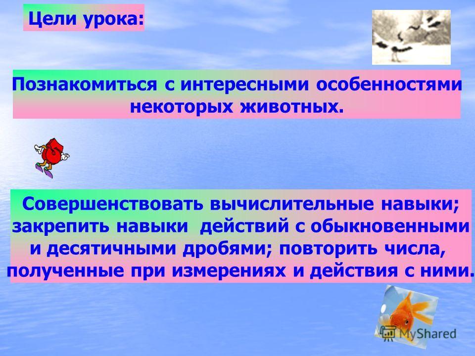 Интегрированный урок апрель 2010 1C:\Users\User\Desktop\Bear.wmvC:\Users\User\Desktop\Bear.wmv