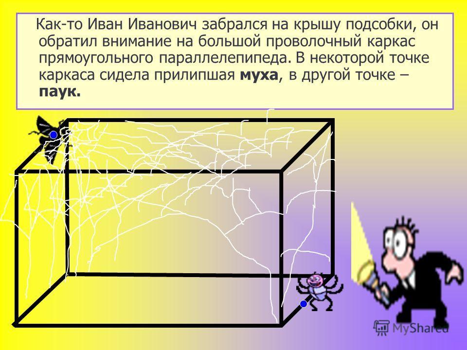 Как-то Иван Иванович забрался на крышу подсобки, он обратил внимание на большой проволочный каркас прямоугольного параллелепипеда. В некоторой точке каркаса сидела прилипшая муха, в другой точке – паук.