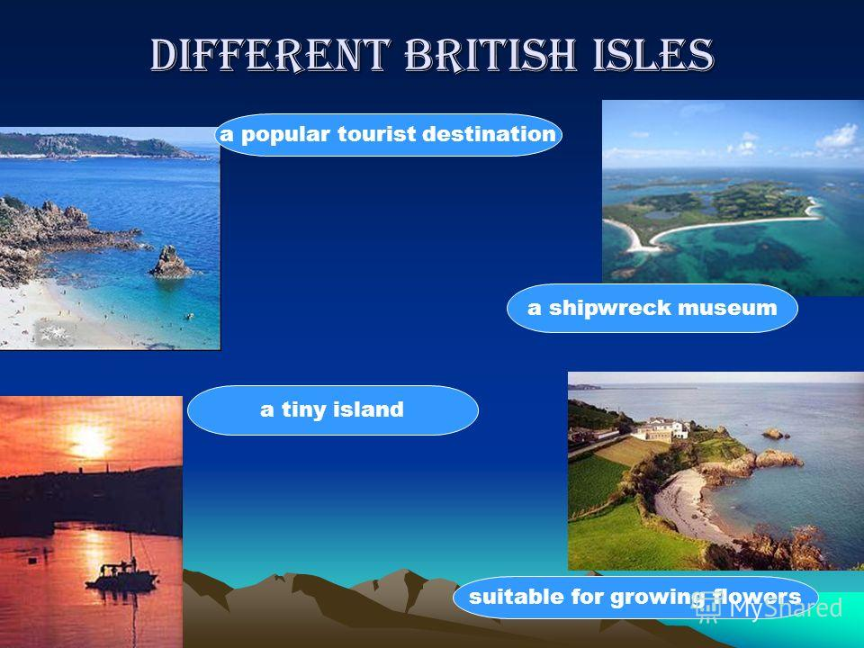 Different British Isles a popular tourist destination suitable for growing flowers a shipwreck museum a tiny island