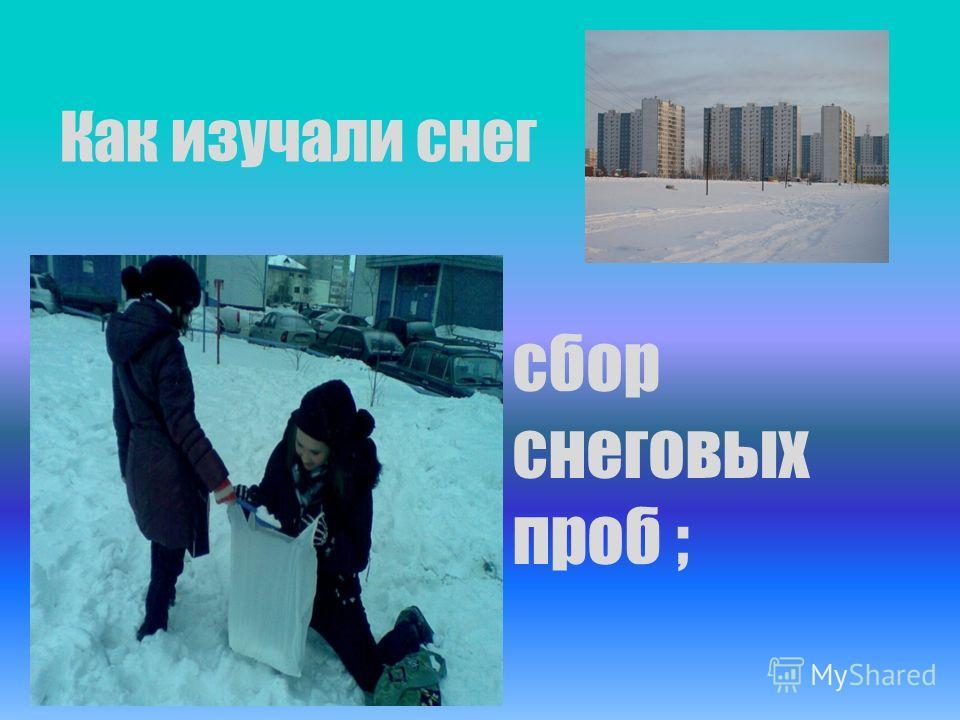Как изучали снег сбор снеговых проб ;