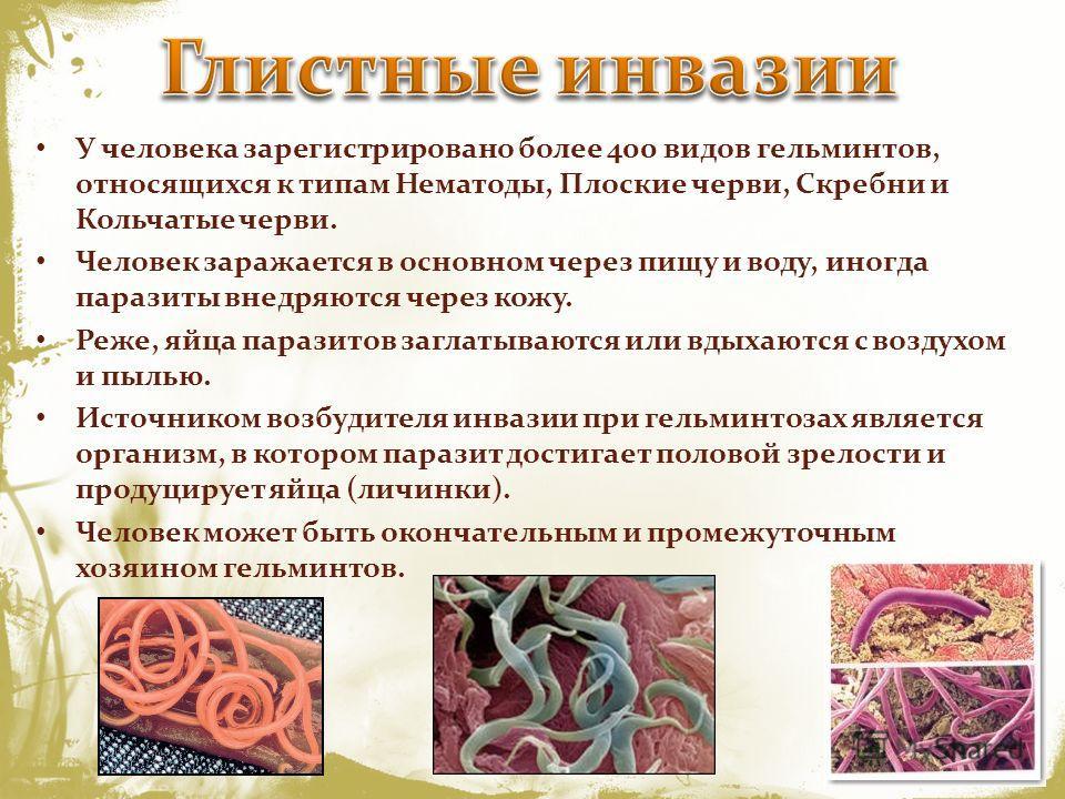 кишечные паразиты у людей
