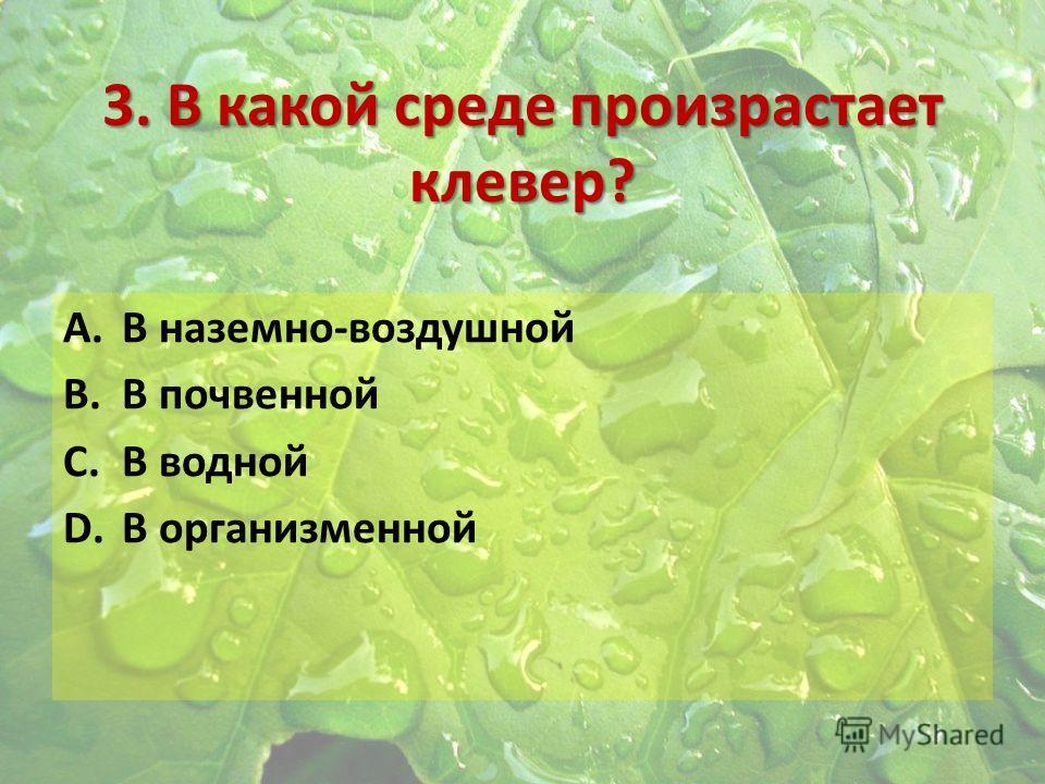 3. В какой среде произрастает клевер? A.В наземно-воздушной B.В почвенной C.В водной D.В организменной