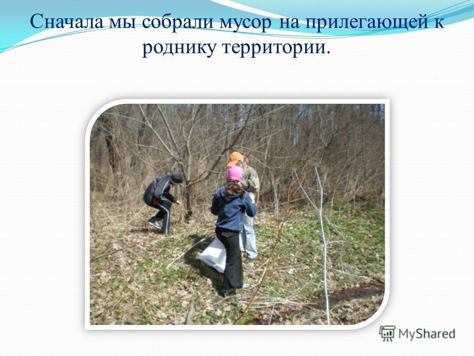 Сначала мы собрали мусор на прилегающей к роднику территории.