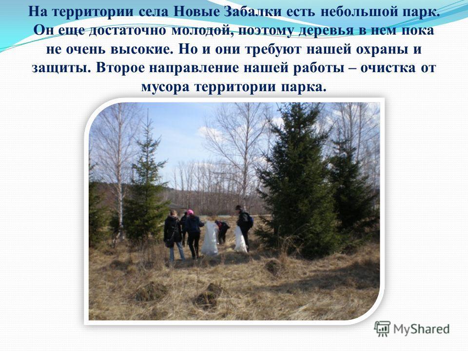 На территории села Новые Забалки есть небольшой парк. Он еще достаточно молодой, поэтому деревья в нем пока не очень высокие. Но и они требуют нашей охраны и защиты. Второе направление нашей работы – очистка от мусора территории парка.